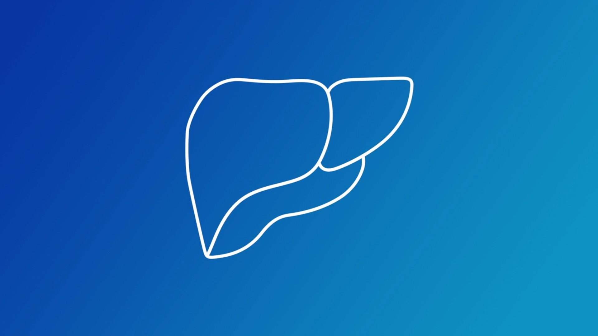 Liver assessment still video